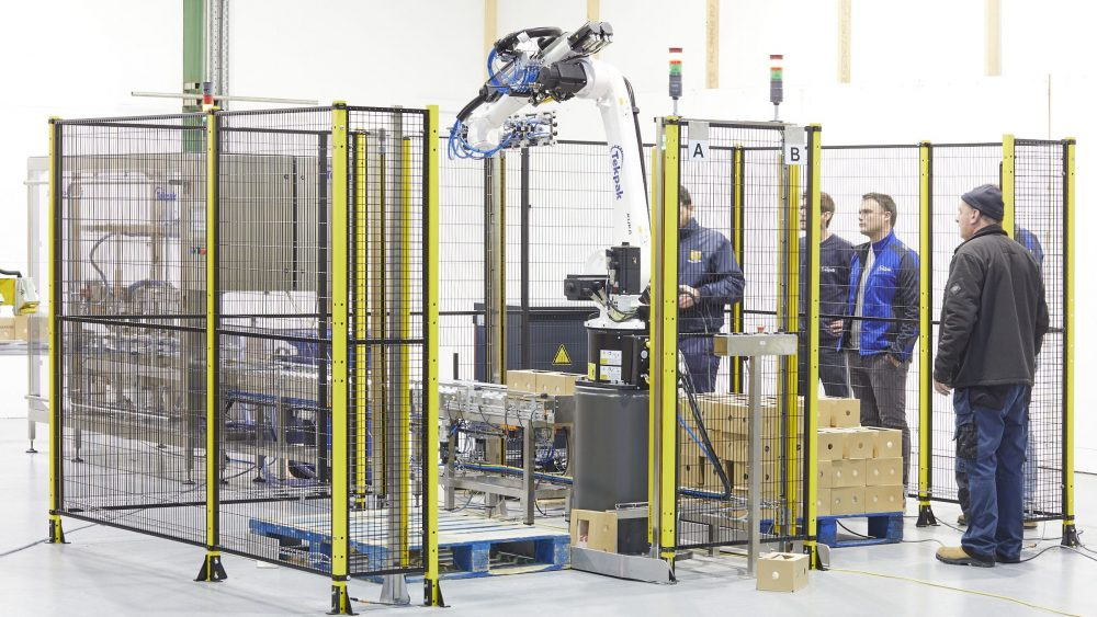 End Of Line Packaging Case Palletising Cell -2